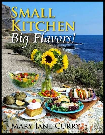 Small Kitchen Big Flavors!  NEW niche Cookbook for the Leisure Traveler